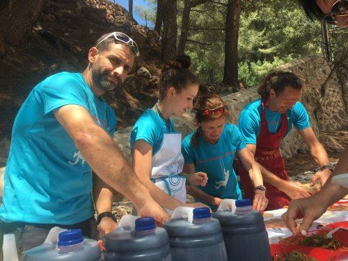 Incentive picnics in mallorca