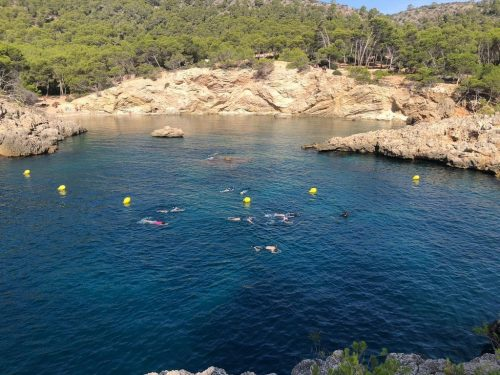Snorkeling incentives in Mallorca