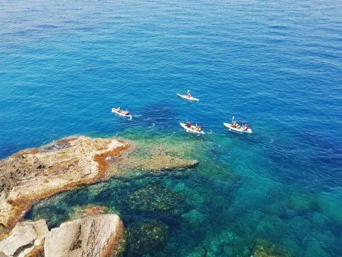 Kayaks view